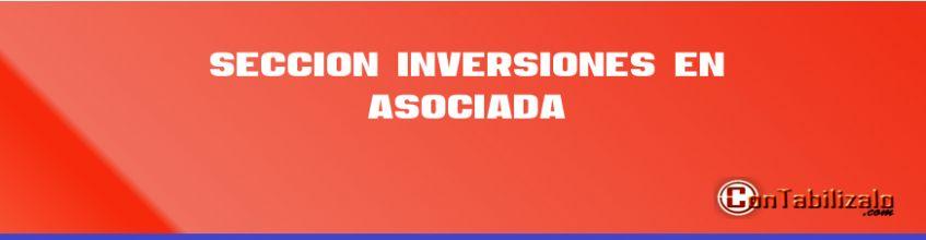 Sección 14 Inversiones en Asociada