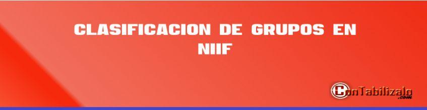 Clasificación de grupos en NIIF