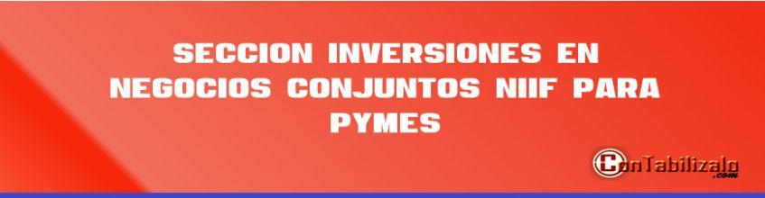 Sección 15 Inversiones en Negocios Conjuntos NIIF para PYMES