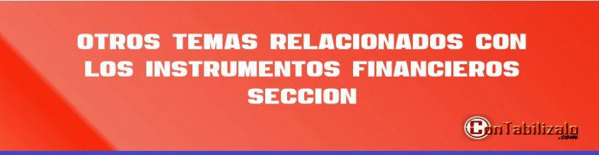 Otros temas relacionados con los instrumentos financieros Sección 12