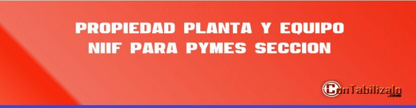 Propiedad Planta y Equipo, NIIF Para Pymes Sección 17